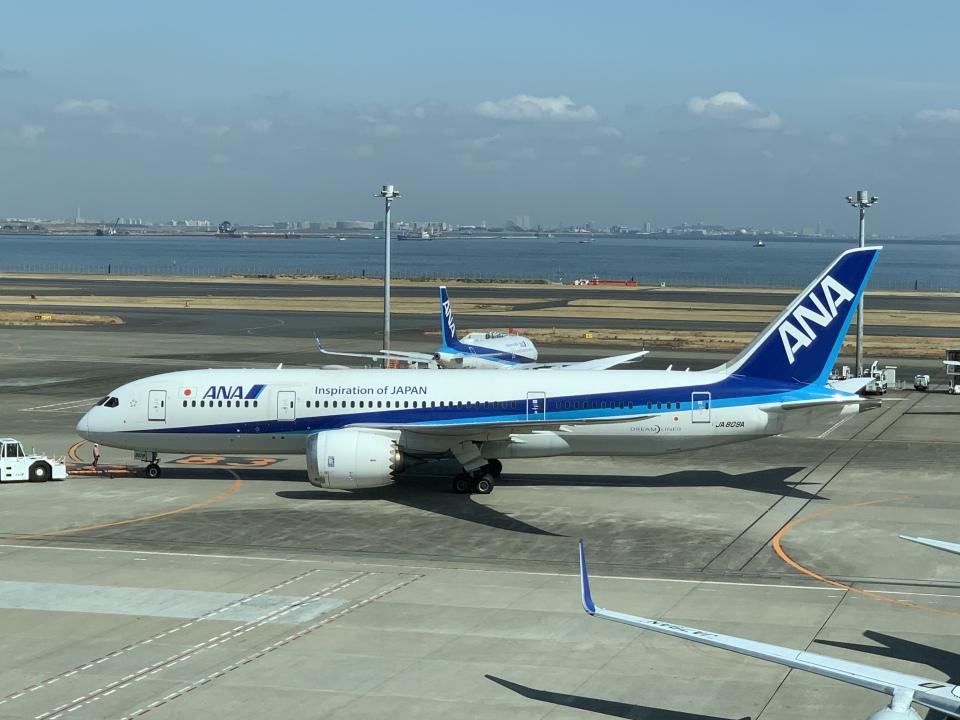 かばさんの全日空 Boeing 787-8 Dreamliner (JA809A) 航空フォト