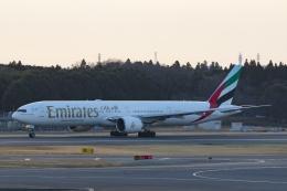Mochi7D2さんが、成田国際空港で撮影したエミレーツ航空 777-31H/ERの航空フォト(飛行機 写真・画像)