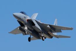yabyanさんが、岐阜基地で撮影した航空自衛隊 F-15J Eagleの航空フォト(飛行機 写真・画像)