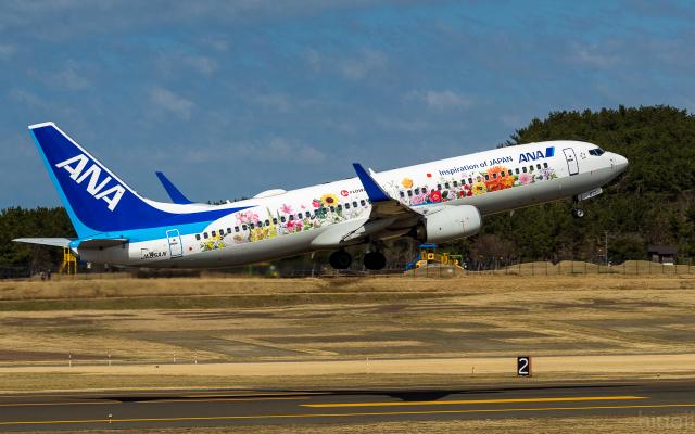 庄内空港 - Shonai Airport [SYO/RJSY]で撮影された庄内空港 - Shonai Airport [SYO/RJSY]の航空機写真(フォト・画像)
