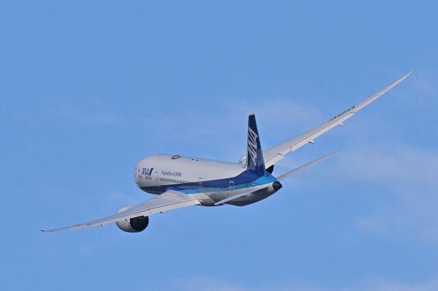 監督さんが、伊丹空港で撮影した全日空 787-8 Dreamlinerの航空フォト(飛行機 写真・画像)