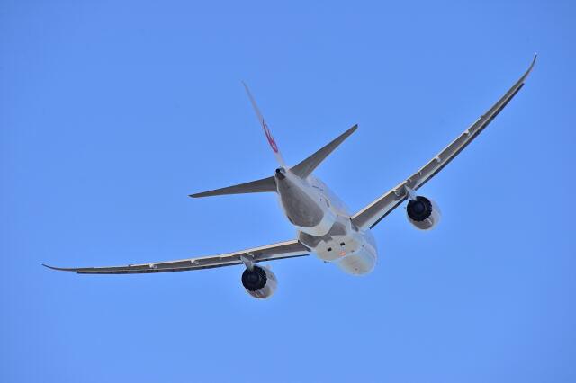 監督さんが、伊丹空港で撮影した日本航空 787-8 Dreamlinerの航空フォト(飛行機 写真・画像)