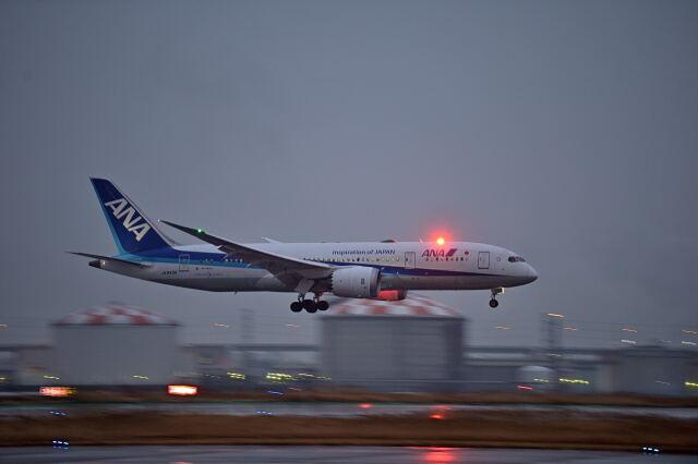 監督さんが、羽田空港で撮影した全日空 787-8 Dreamlinerの航空フォト(飛行機 写真・画像)