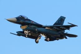 yabyanさんが、岐阜基地で撮影した航空自衛隊 F-2Aの航空フォト(飛行機 写真・画像)