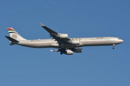 Deepさんが、成田国際空港で撮影したエティハド航空 A340-642Xの航空フォト(飛行機 写真・画像)