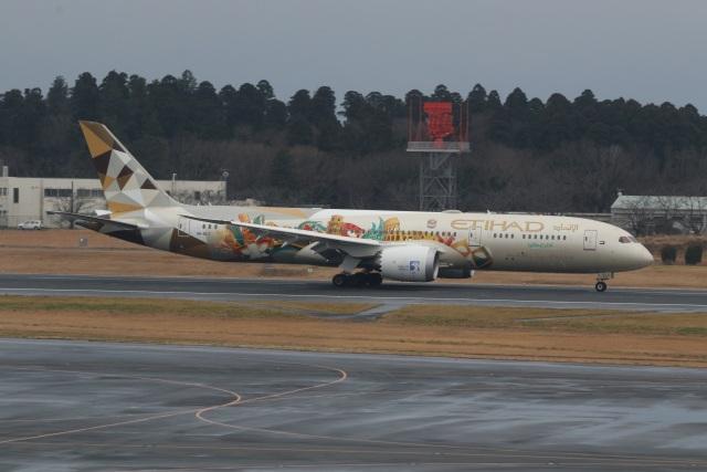 ショウさんが、成田国際空港で撮影したエティハド航空 787-9の航空フォト(飛行機 写真・画像)