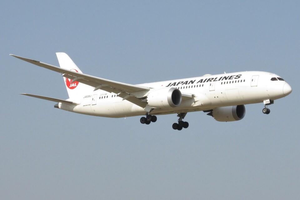 BOEING737MAX-8さんの日本航空 Boeing 787-8 Dreamliner (JA836J) 航空フォト
