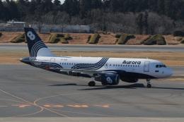 ショウさんが、成田国際空港で撮影したオーロラ A319-111の航空フォト(飛行機 写真・画像)