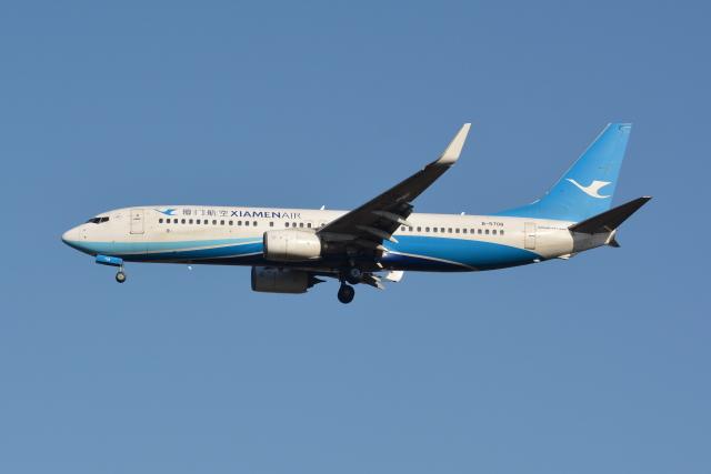 Deepさんが、成田国際空港で撮影した厦門航空 737-85Cの航空フォト(飛行機 写真・画像)