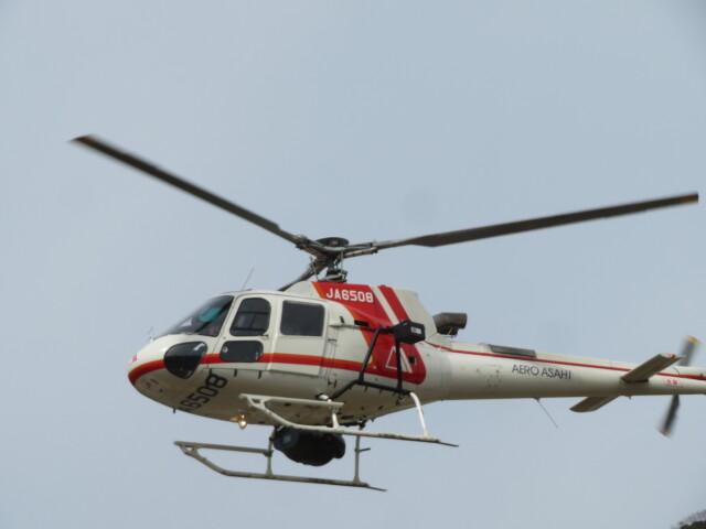 チダ.ニックさんが、静岡ヘリポートで撮影した朝日航洋 AS350B3 Ecureuilの航空フォト(飛行機 写真・画像)