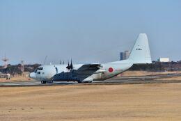 kotaちゃんさんが、厚木飛行場で撮影した海上自衛隊 C-130Rの航空フォト(飛行機 写真・画像)