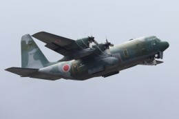 Yuseiさんが、福岡空港で撮影した航空自衛隊 C-130H Herculesの航空フォト(飛行機 写真・画像)