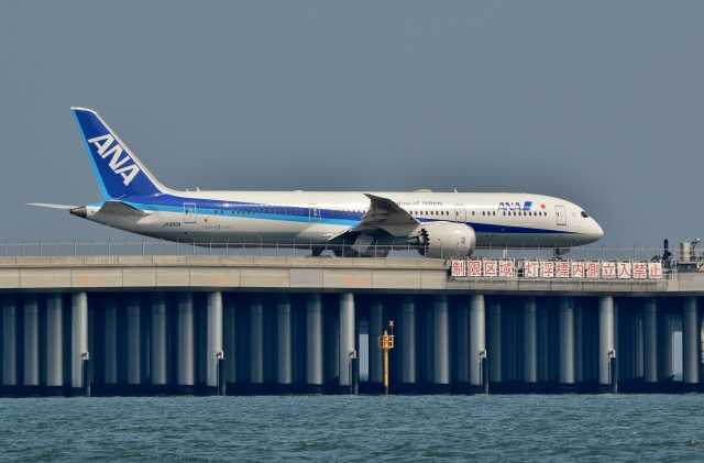 h_wajyaさんが、羽田空港で撮影した全日空 787-9の航空フォト(飛行機 写真・画像)