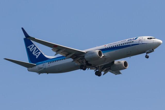 walker2000さんが、羽田空港で撮影した全日空 737-881の航空フォト(飛行機 写真・画像)