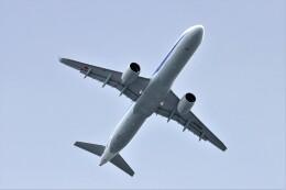 T.Sazenさんが、伊丹空港で撮影した全日空 A321-272Nの航空フォト(飛行機 写真・画像)