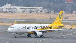 flytaka78さんが、成田国際空港で撮影したピーチ A320-214の航空フォト(飛行機 写真・画像)