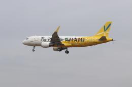89Xさんが、成田国際空港で撮影したピーチ A320-214の航空フォト(飛行機 写真・画像)