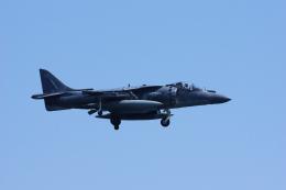 ぼくちゃんさんが、岩国空港で撮影したアメリカ海兵隊 AV-8B Harrier II+の航空フォト(飛行機 写真・画像)