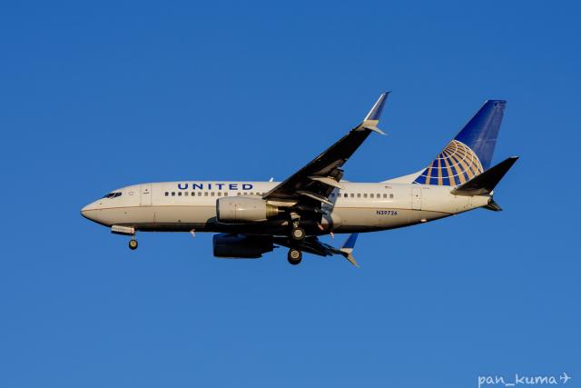 ぱん_くまさんが、成田国際空港で撮影したユナイテッド航空 737-724の航空フォト(飛行機 写真・画像)