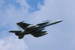 ぼくちゃんさんが、厚木飛行場で撮影したアメリカ海軍 F/A-18F Super Hornetの航空フォト(飛行機 写真・画像)