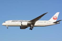 banshee02さんが、成田国際空港で撮影した日本航空 787-8 Dreamlinerの航空フォト(飛行機 写真・画像)