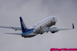 湖景さんが、福島空港で撮影した全日空 737-881の航空フォト(飛行機 写真・画像)