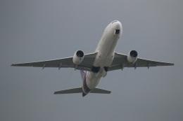ニヤンさんが、ニノイ・アキノ国際空港で撮影したタイ国際航空 777-2D7の航空フォト(飛行機 写真・画像)