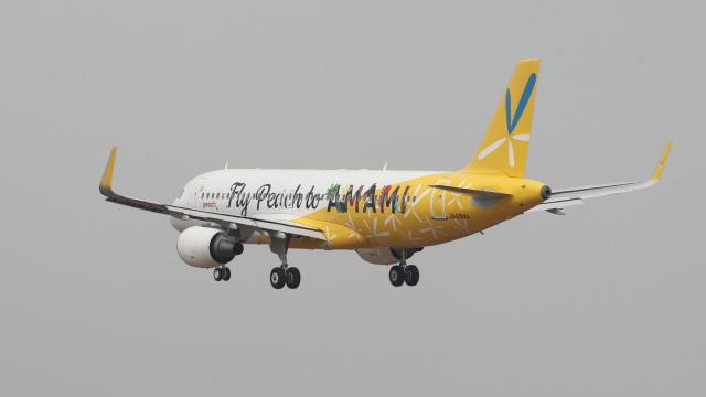 raichanさんが、成田国際空港で撮影したピーチ A320-214の航空フォト(飛行機 写真・画像)
