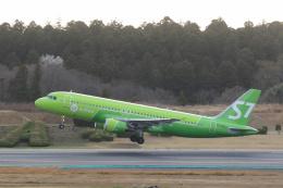 inyoさんが、成田国際空港で撮影したS7航空 A320-214の航空フォト(飛行機 写真・画像)