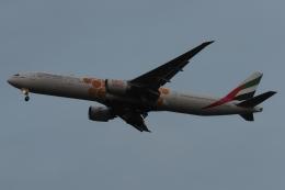 木人さんが、成田国際空港で撮影したエミレーツ航空 777-31H/ERの航空フォト(飛行機 写真・画像)