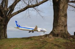 flyskyさんが、成田国際空港で撮影した全日空 787-9の航空フォト(飛行機 写真・画像)