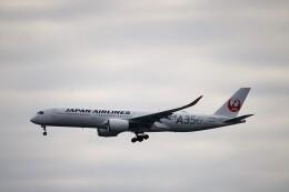 レドームさんが、羽田空港で撮影した日本航空 A350-941の航空フォト(飛行機 写真・画像)