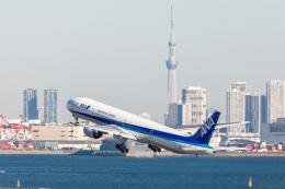 Y-Kenzoさんが、羽田空港で撮影した全日空 777-381の航空フォト(飛行機 写真・画像)
