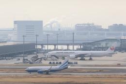 Masa69さんが、羽田空港で撮影したラスベガス サンズ 737-74U BBJの航空フォト(飛行機 写真・画像)