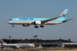 xingyeさんが、成田国際空港で撮影した大韓航空 787-9の航空フォト(飛行機 写真・画像)