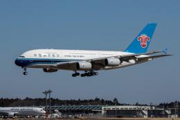 xingyeさんが、成田国際空港で撮影した中国南方航空 A380-841の航空フォト(飛行機 写真・画像)