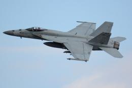 Tomo-Papaさんが、厚木飛行場で撮影したアメリカ海軍 F/A-18E Super Hornetの航空フォト(飛行機 写真・画像)