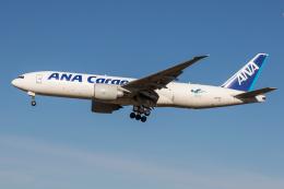 xingyeさんが、成田国際空港で撮影した全日空 777-F81の航空フォト(飛行機 写真・画像)