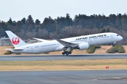 フリューゲルさんが、成田国際空港で撮影した日本航空 787-9の航空フォト(飛行機 写真・画像)
