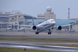 監督さんが、那覇空港で撮影した全日空 787-8 Dreamlinerの航空フォト(飛行機 写真・画像)
