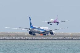 監督さんが、那覇空港で撮影した全日空 787-9の航空フォト(飛行機 写真・画像)