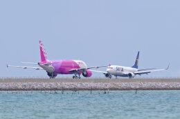 監督さんが、那覇空港で撮影したピーチ A320-214の航空フォト(飛行機 写真・画像)