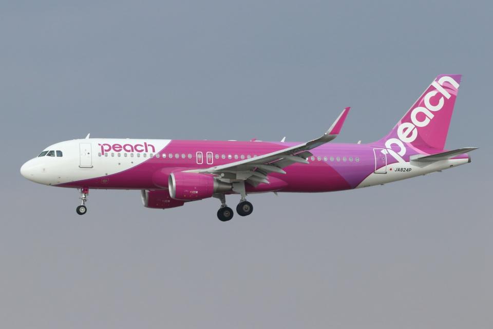 kunimi5007さんのピーチ Airbus A320 (JA824P) 航空フォト