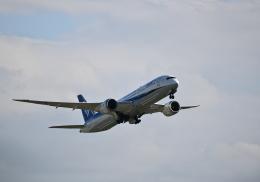平凡なおっちゃんさんが、伊丹空港で撮影した全日空 787-9の航空フォト(飛行機 写真・画像)