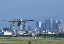 平凡なおっちゃんさんが、伊丹空港で撮影したANAウイングス DHC-8-402Q Dash 8の航空フォト(飛行機 写真・画像)