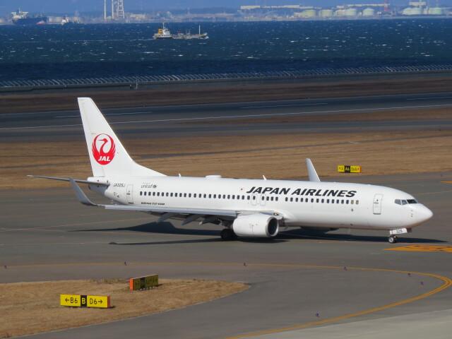 F.YUKIHIDEさんが、中部国際空港で撮影した日本航空 737-846の航空フォト(飛行機 写真・画像)