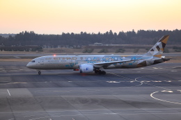 TAKA-Kさんが、成田国際空港で撮影したエティハド航空 787-9の航空フォト(飛行機 写真・画像)