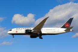 inyoさんが、成田国際空港で撮影したエア・カナダ 787-8 Dreamlinerの航空フォト(飛行機 写真・画像)
