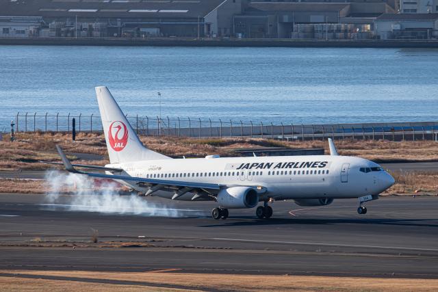 SGR RT 改さんが、羽田空港で撮影した日本航空 737-846の航空フォト(飛行機 写真・画像)