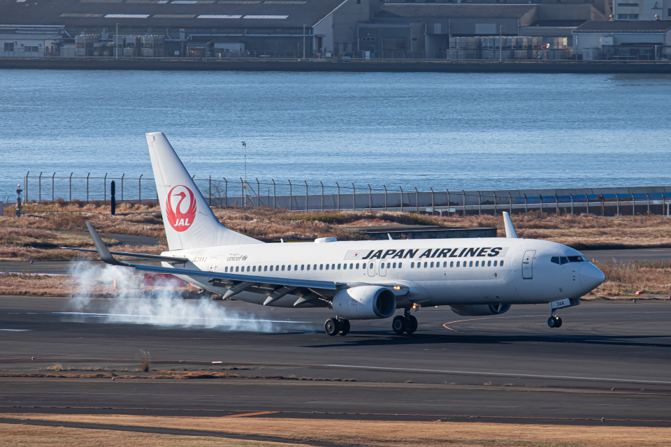 SGR RT 改さんの日本航空 Boeing 737-800 (JA344J) 航空フォト